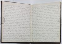 1867-1871: minutes of the January 8, 1869 devotional meeting of the Ladies' Christian Union [cont'd].