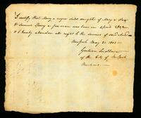 [Birth certificate of Mary a negro child]