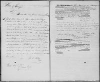 Volume 3, Indentures, 1809-1829. Register of manumissions and indentures, page [112]-[113]