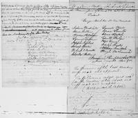 Volume 5, Minutes of meetings, records, and reports of committees. [Miscellaneous drafts, 1818], page [12]-[13]