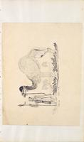 [Unnumbered], [Drawing of a camel]