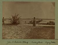 John E. Seabrook's Wharf. Century plant. Drying cotton. [Image]