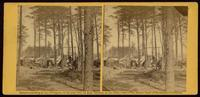 Winter quarters of telegraphic and photographic departments, attached to headquarters Army Potomac, April, 1864