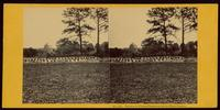 Graves of Union prisoners at the Race Course
