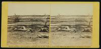 Confederate soldiers as they fell at the battle of Antietam