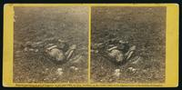 He sleeps his last sleep.  A Confederate soldier who after being wounded had evidently dragged himself to a little ravine on the hill side, where he died. [Stereograph]
