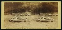 Confederate soldiers as they fell, near the centre of the battle-field of Gettysburg