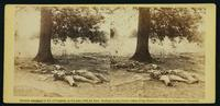 Confederate soldiers who had evidently been shelled by our batteries on Round Top, at the battle of Gettysburg