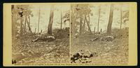 Scene in the woods at foot of Round Top, at battle of Gettysburg