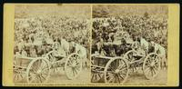 Benson's [i.e. Gibson's] Battery of Horse Artillery, near Fair Oaks, June 1862