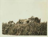 Flushing: Derrick Brinckerhoff House (later Skidmore), Black Stump Road east of Fresh Meadow Road, 1922.