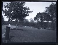 Bronx: [Berrien family burial plot in Van Cortlandt Park, southeast of the Van Cortlandt house, May 1925.]