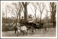 New York City: two unidentified girls in a goat cart, Central Park, 1908.