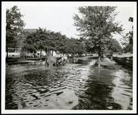 New York City: horse-drawn cart on unidentified flooded neighborhood street, undated. Queens.