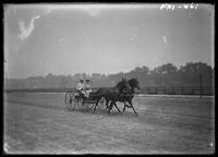 New York City: couple in carriage, horses trotting on the Harlem River Speedway, High Bridge, undated.
