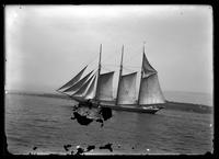 Unidentified topsail schooner, undated.