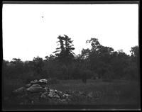 Westchester County: [unidentified woods with stone cairn, left, undated.]