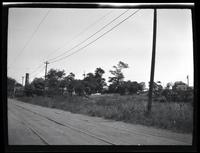 Long Island City: [distant shot of unidentified cemetery with trees, surrounded by wooden fence, undated. Dirt road with trolley tracks in foreground.]