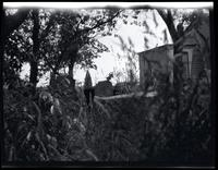 Long Island City: [unidentified broken tombstones in overgrown cemetery, undated. Wooden house partially visible at right.]