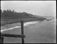 Harbor shore below Shore Road, Bay Ridge, Brooklyn, viewed from a dock, undated. Part of a panorama. Photographed for Joseph P. Day.