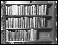 Bookshelves in the Montague branch of the Brooklyn Public Library, December 14, 1914.