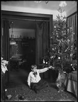 William Gray Hassler seated beside a Christmas tree with cat Peaches, New York City, January 3, 1917.