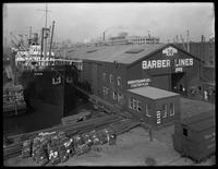 Barber Lines Pier 36, Brooklyn, undated (ca. May-June 1919). Photographed for the Robbins-Ripley Company.
