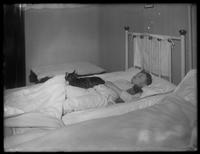 William Gray Hassler asleep in his cot with teddy bear and Reddy the cat, New York City, undated (ca. 1913).