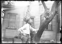 Unidentified man looking at Reddy the cat, who is sitting in a tree, Meadville, Pa. (?), undated (ca. 1911-1921).