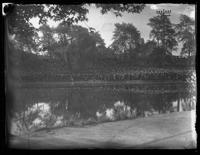 Large crowd gathered by a park lake, possibly to hear Ernestine Schumann-Heink, possibly Cleveland, Ohio, undated (ca. 1916-1920).