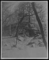 Central Park spring at W. 109th Street, 150 feet east of Eighth Avenue, New York City, March 18, 1901.