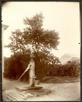 Flatlands Neck well, Church Avenue, Brooklyn, New York City, October 2, 1898.