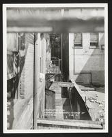 Depressed areaways in rear of West 123rd Street buildings, Manhattan