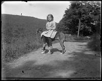 Unidentified little girl sitting on Dave the dog, Garrison, N.Y., 1903.