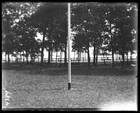 Avenue of trees near the shore, Orchard Beach, Bronx, N.Y., 1910.