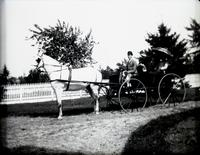 Angie, May Voorhees, Flash (dog) and 'I' (unidentified photographer) in a surrey, Hempstead N.Y., June 9, 1891. Taken by the photographer's mother.