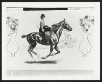 Unidentified model on painted horse and background, undated [circa 1900-1910].
