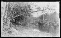 View looking up the Bronx River, Bronx, New York, 1891. Ruins of a mill in the distance.